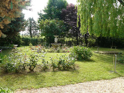 Jardipol sprl  - Entretien jardin